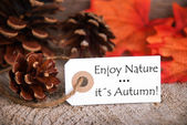 Autumn Label with Enjoy Nature, Its Autumn on it — Stock Photo