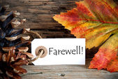 Autumn Labwl with Farewell — Stock Photo