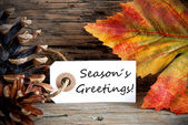 Label with Seasons Greetings, Fall Background — Stock Photo