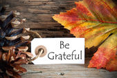 Label with Be Grateful — Stockfoto