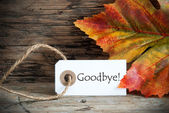 Fall Label with Goodbye — Foto de Stock