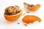 Nut with orange peel — Stock Photo