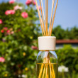 Stock Photo: Home fragrance diffuser