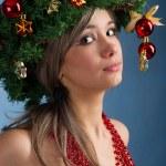 Christmas tree — Stock Photo #16772653