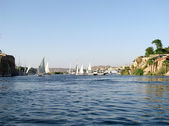 Mısır. Nil ve felucca — Stok fotoğraf