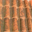 A red tile roof - 图库照片