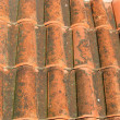 A red tile roof - Foto Stock
