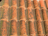 A red tile roof — Stock Photo
