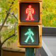 Pedestrian traffic lights green and red light — Stock Photo #16149233