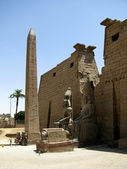Luxor Temple, Egypt ll — Stock Photo