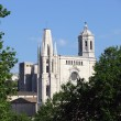 Girona cathedral — Stock Photo #16632965
