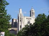 Catedral de girona — Foto Stock