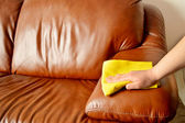 Cleaning brown sofa — Stock Photo