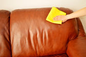 Cleaning sofa — Stock Photo