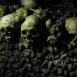Human Skulls and Bones in the Catacombs of Paris — Stock Photo