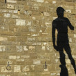 Shadow on a wall of one of the out door replicas of Michaelangelo's Davids in Florence  — Stock Photo