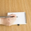 Hand with pen writing down notes — Stock Photo #27861923