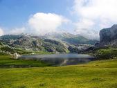 Landscape of Covadonga lakes in Asturias — Stockfoto