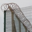 Barbed Wire — Stock Photo #14470869