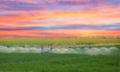 An irrigation pivot watering a field — Stock Photo