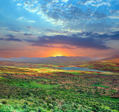Sunset over green valley — Stock Photo