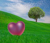 Landscape with tree and heart — Stock Photo