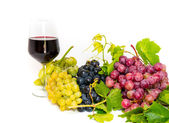 Glasses of wine and assortment of grapes, isolated on white — Stock Photo