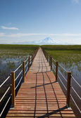 Beautiful landscape and Sultanmarshes (bird paradise) next to erciyes mountain, Kayseri — Stock Photo