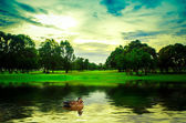 Duck on the water — Stock Photo