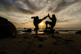Muay Thai vs Capoeira — Stock Photo