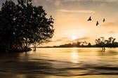 закат вид рядом с пляжем — Стоковое фото