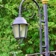 Street lamp in the old style — Stock Photo #48224611