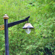 Street lamp in the old style — Stock Photo #48224635
