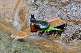 Zen stone with spa oil — Stock Photo
