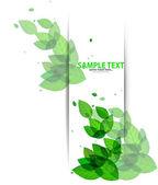 Shiny green leaves on white — Stock Vector