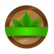 Vector ecology green wooden label — Stock Vector