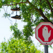 Wrong way Stop sign and shoes on the tree — Photo