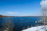 Flying birds over winter lake or river with snowy shores — Stockfoto