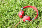 Colorful red headphones on sunlight glade — Stock Photo