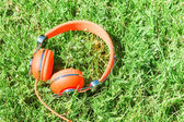 Bright orange colorful headphones on fresh sward — Stock Photo