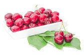 Dark vinous cherry berries served in square white dish — Stock Photo