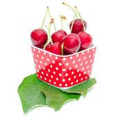 Summer dessert ripe cherry wet with drops berries — Stock Photo