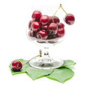 Cherry berries fruits in clear wineglass on green fresh leaves — Stock Photo