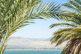 Kinneret lake or Galilee sea and Golan Heights — Stock Photo