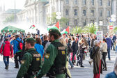 German police to maintain order on the pro-Palestinian demonstra — 图库照片