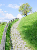 Long and difficult upstairs road — Stock Photo