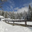 Stock Photo: Winter Hiking trail, after Snowfall