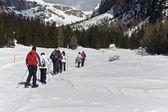 Snowshoeing through Puez-Odle natural park — Stock Photo