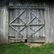 Stock Photo: Old Barn Doors