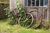 Old Carriage Wheels — Stock Photo